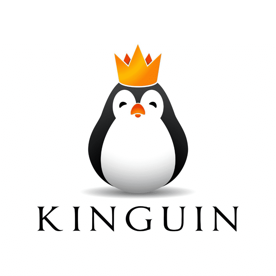 Is Kinguin Legit To Buy Games, Windows Or Other Software Keys? Our Unbiased Review 3